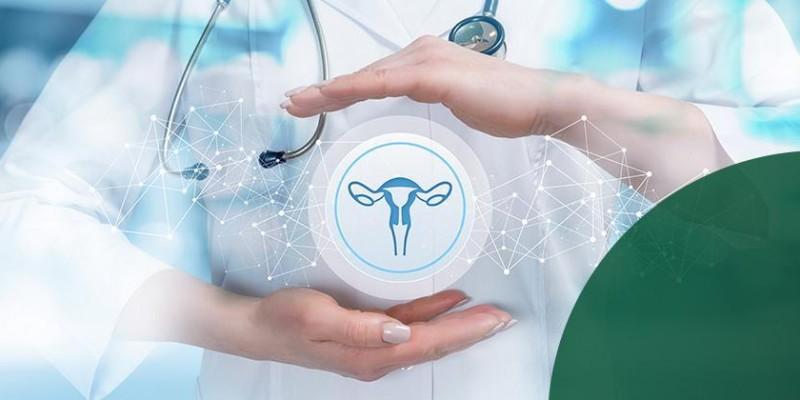 Ginecologia e Obstetrícia - Os principais problemas tratados com um ginecologista